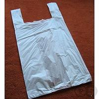 white plastic bag.jpg